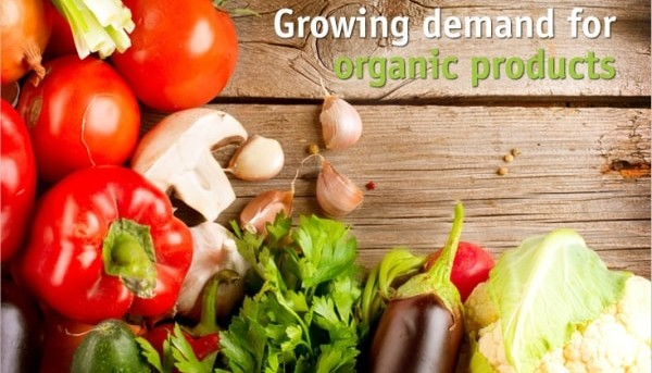 Organic vs Inorganic Food - advantages