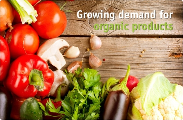 Organic vs Inorganic Food - advantages