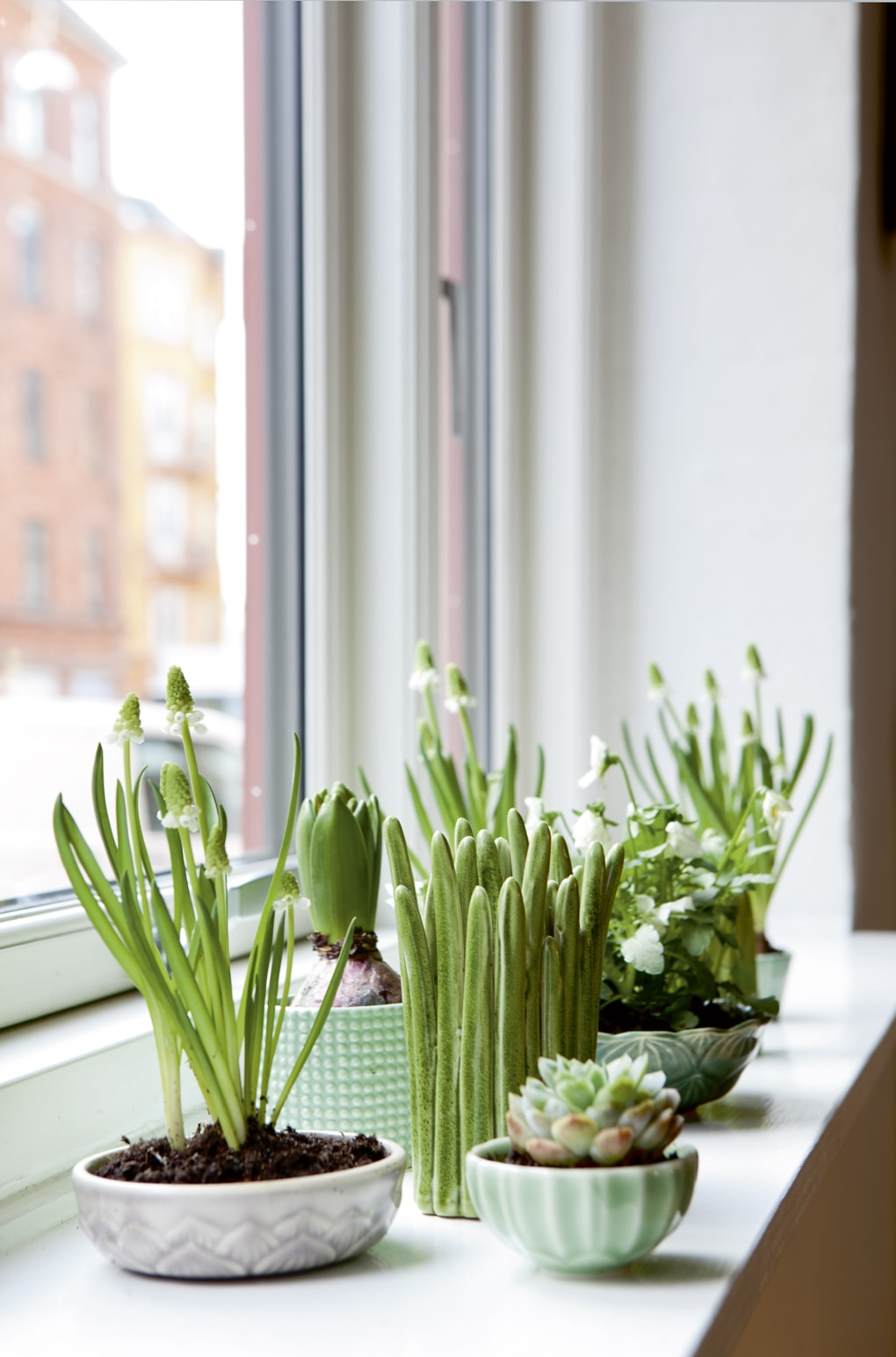 12 Creative Indoor Garden Ideas for your Home Decor