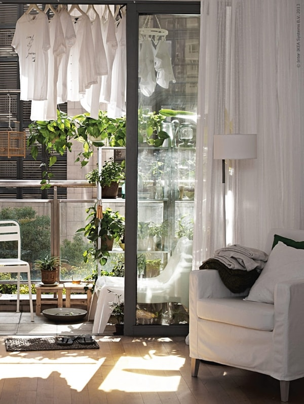 Indoor garden in living room