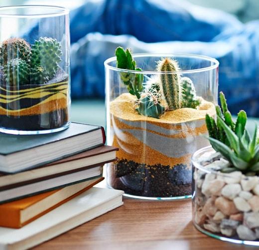 Table terrarium